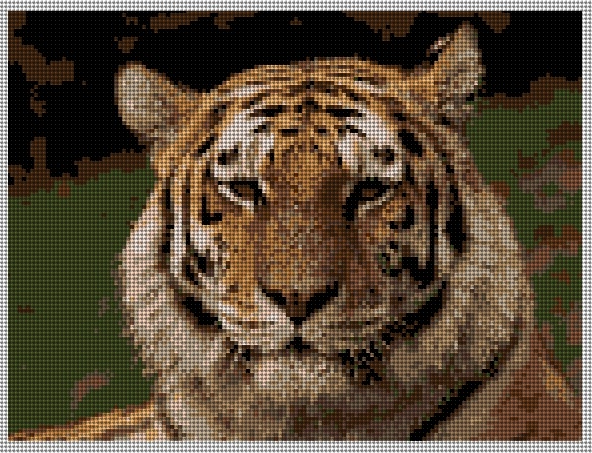 Tiger Needlepoint Canvas 8 x 6 inches on 18 mesh canvas
