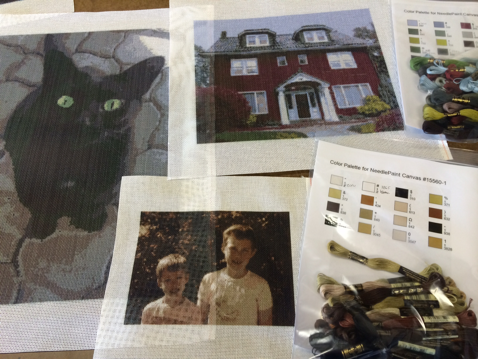 Photo Needlepoint Kits