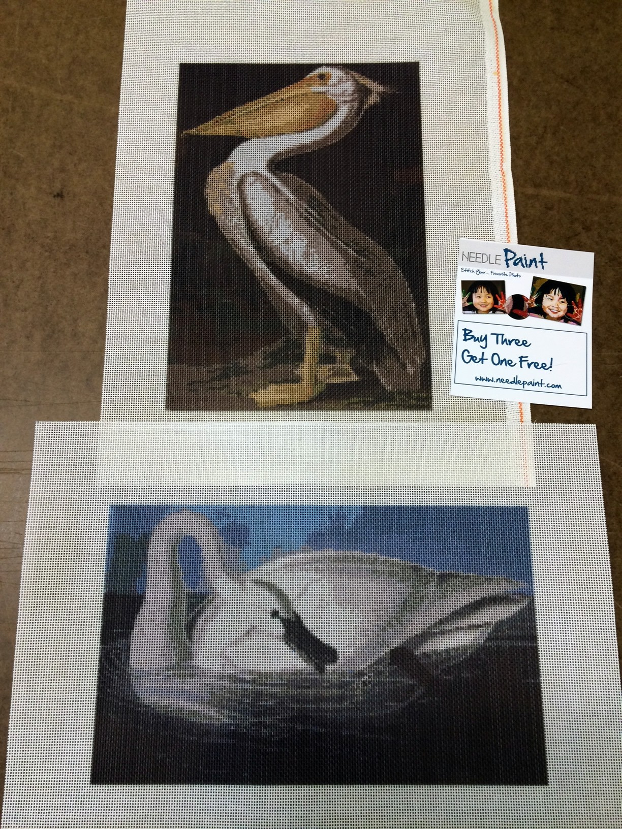 Audubon Swan and White Pelican Needlepoint Kits