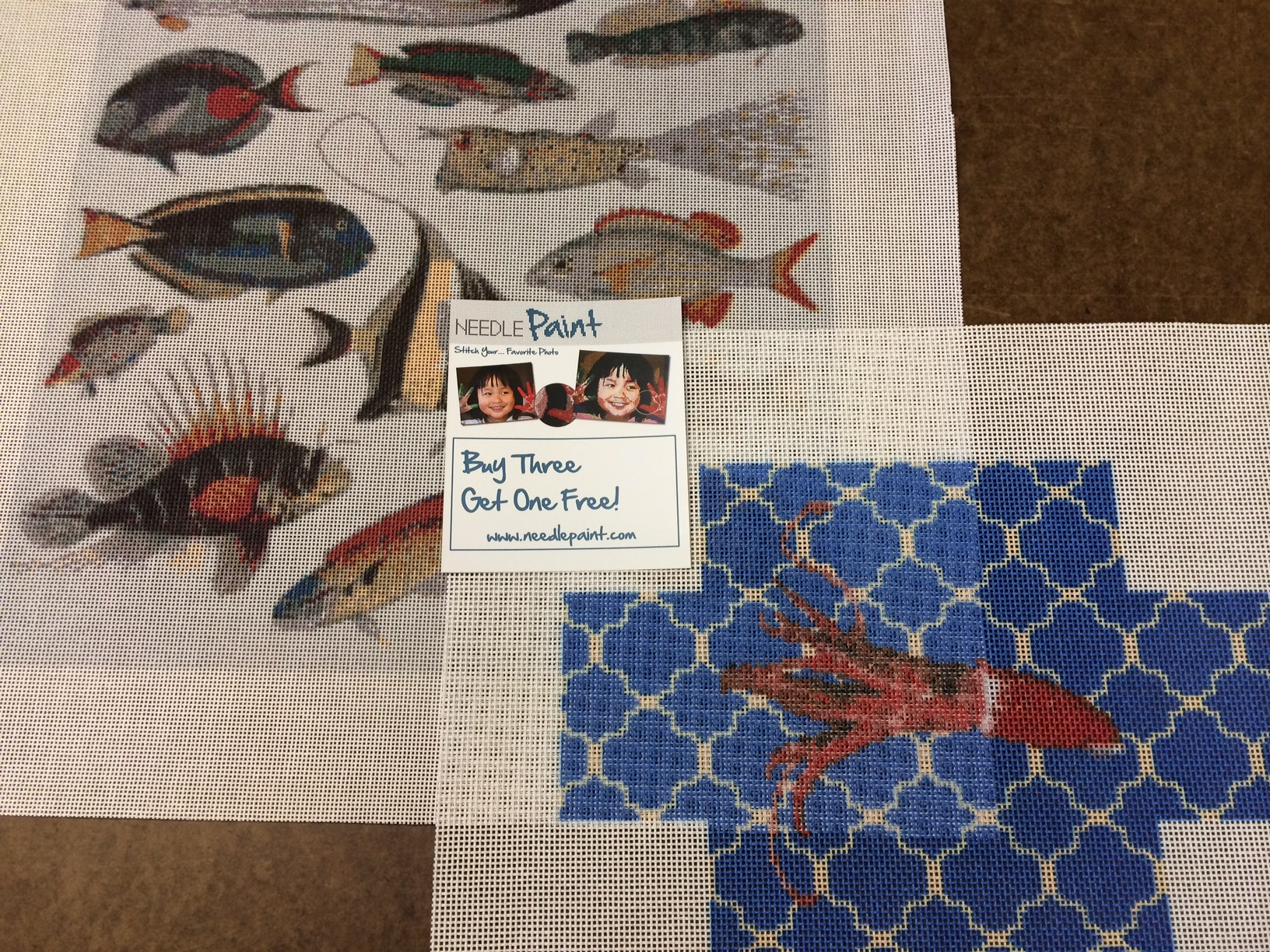 Custom Brick Cover and Tropical Fish Needlepoint Kit