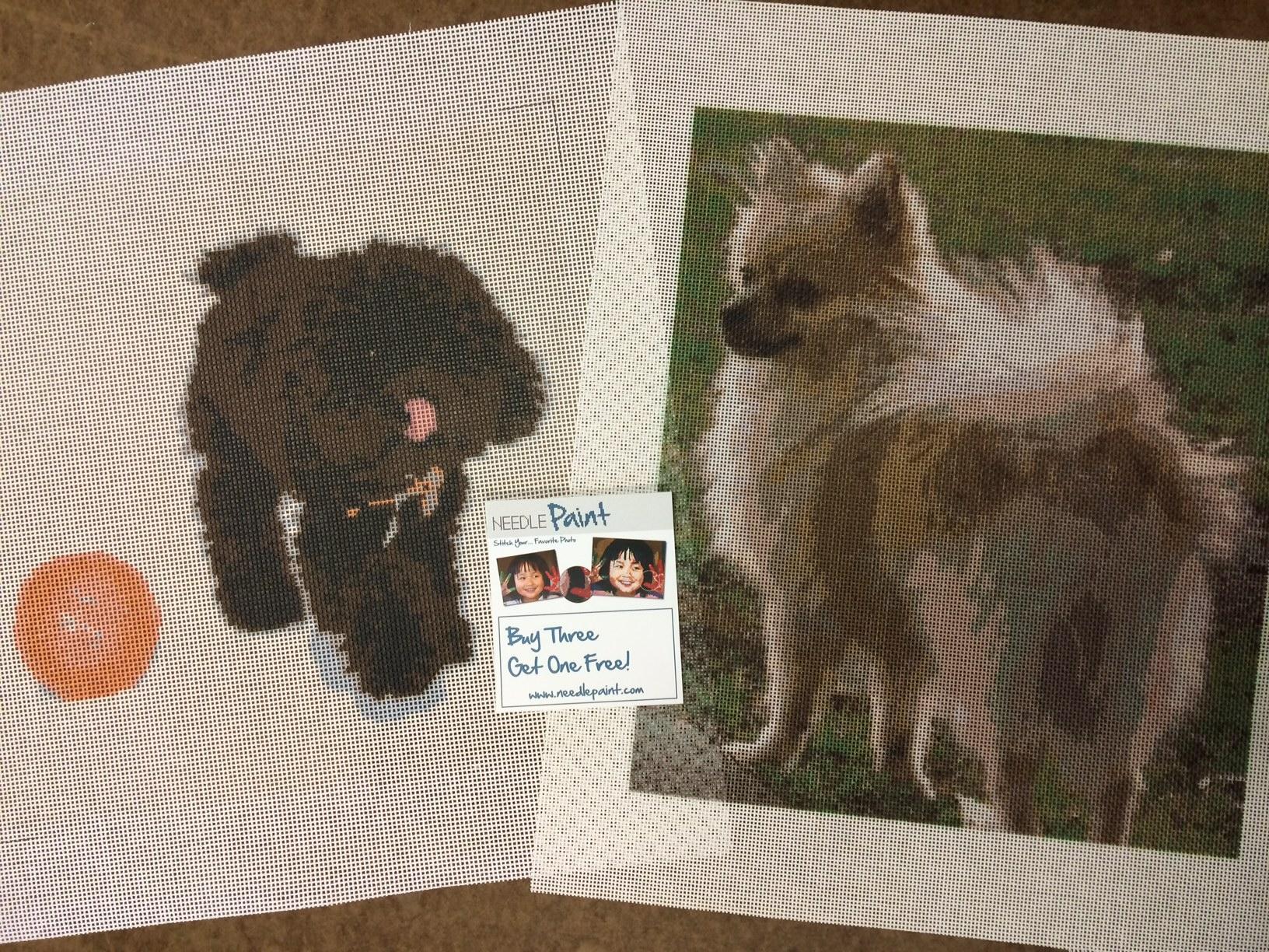 Pomeranian and Dog Playing Needlepoint Kits