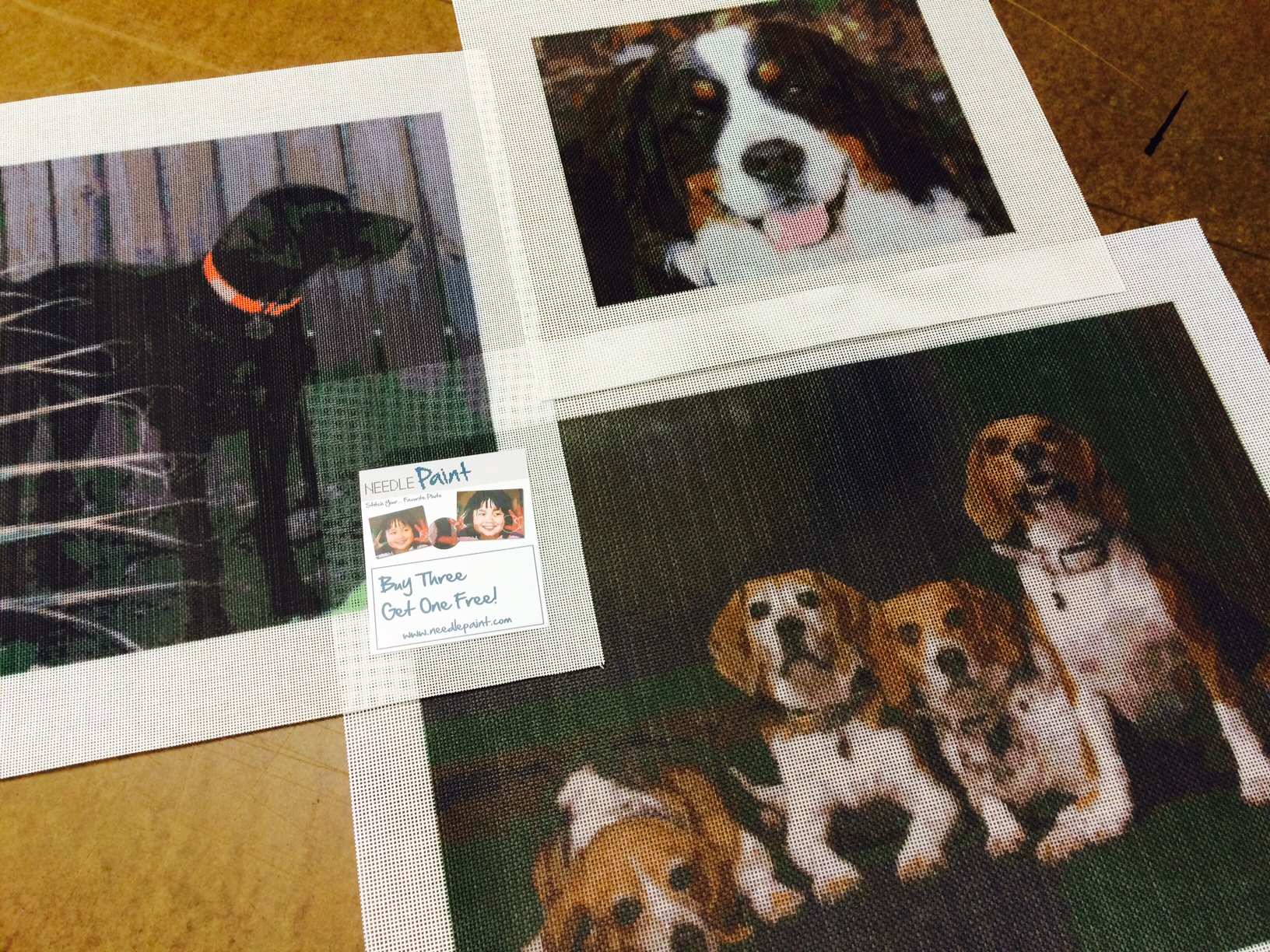 Beagles and other Dog Needlepoint Kits