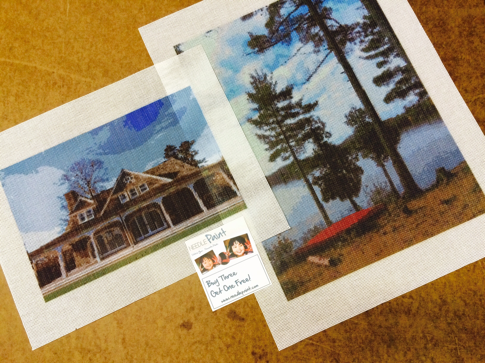 Landscape and Home Needlepoint Kits