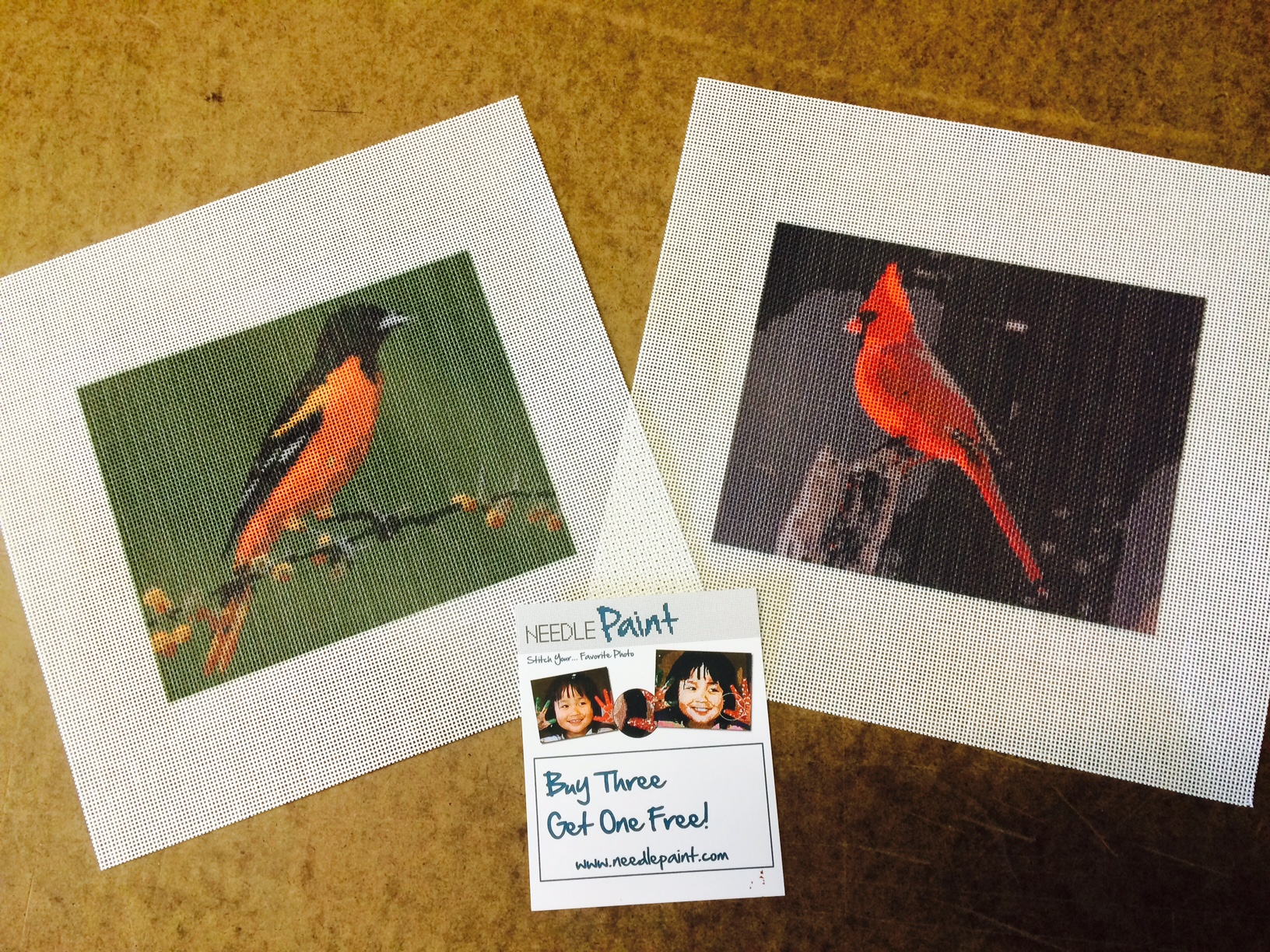 Oriole and Cardinal Custom Bird Needlepoint Canveses