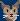 Cat Face Profile