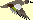 Duck Blue Winged Teal