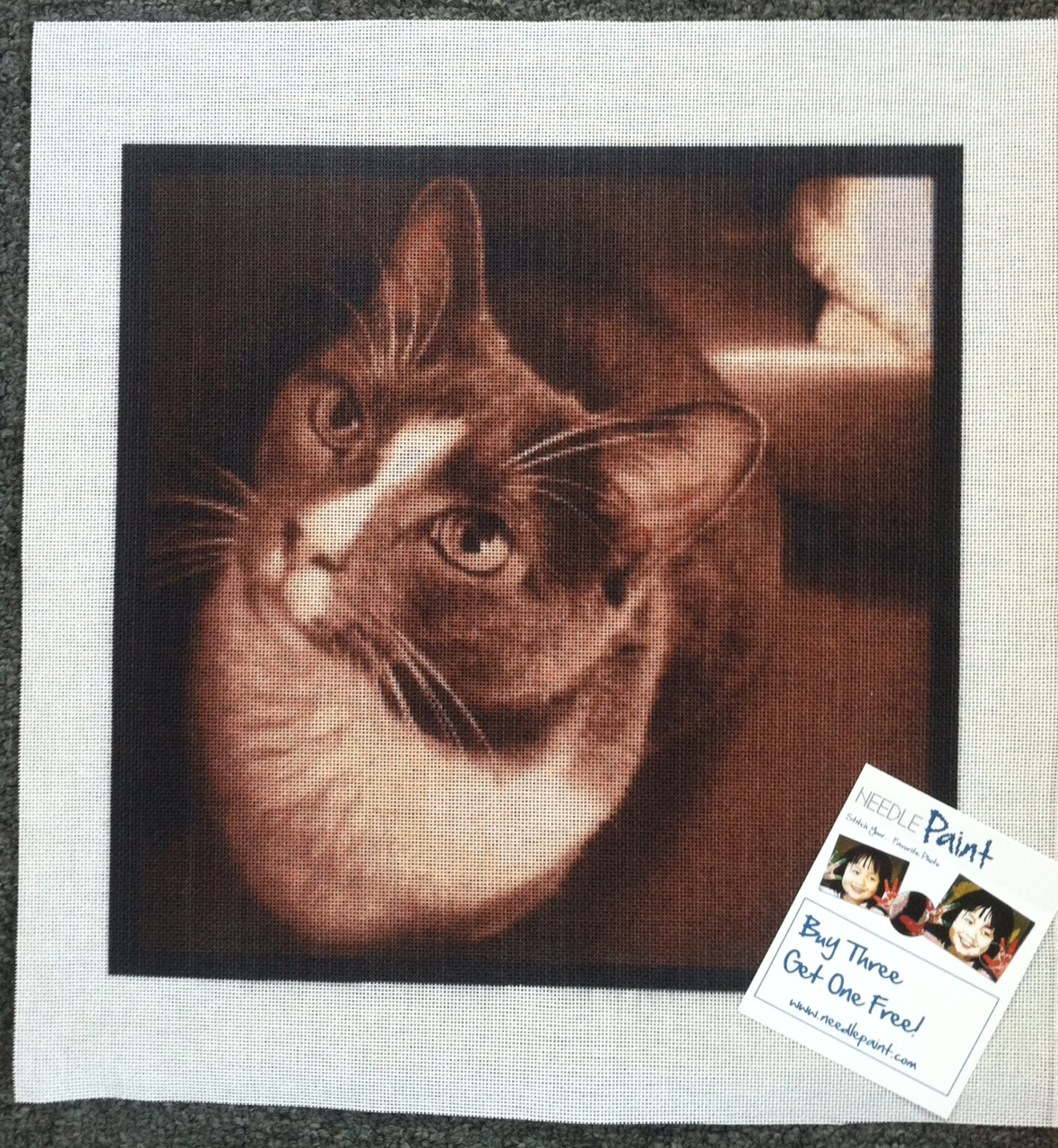 Cool Cat Needlepoint Canvas