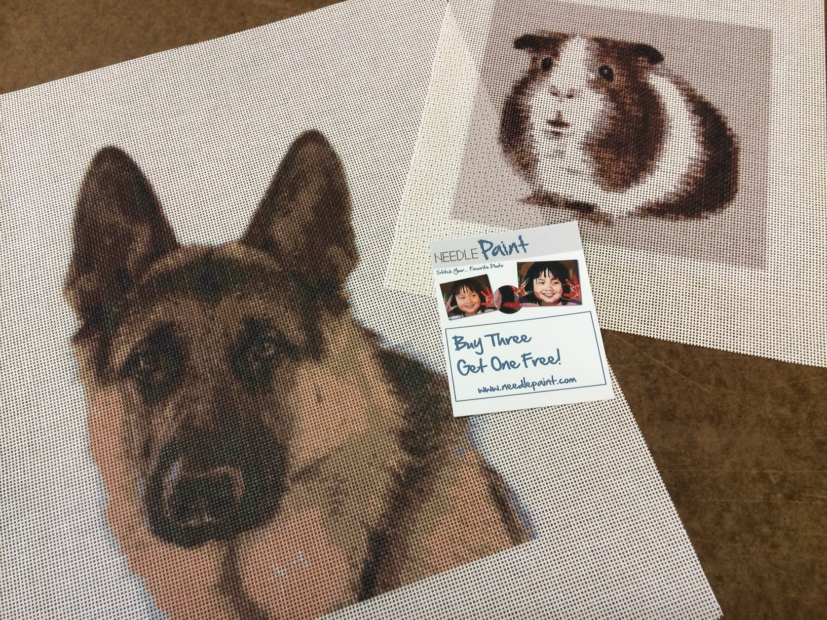 German Shepherd and Guinea Pig Canvases