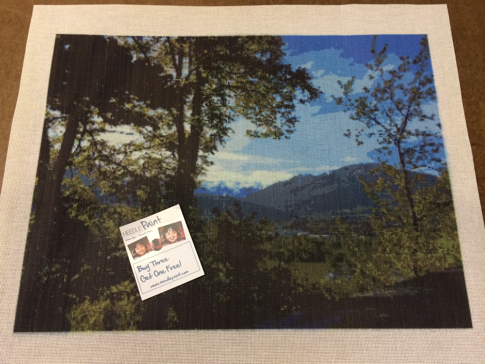 Mountain Landscape Needlepoint Canvas