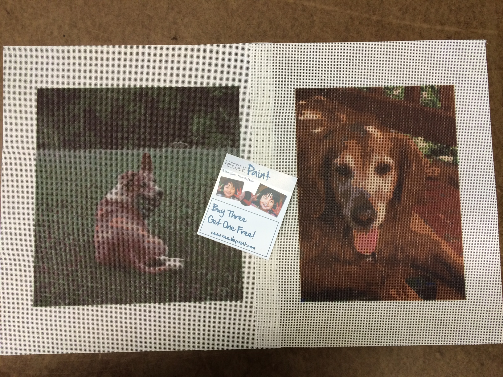 Needlepoint Canveses from Photos of Dogs