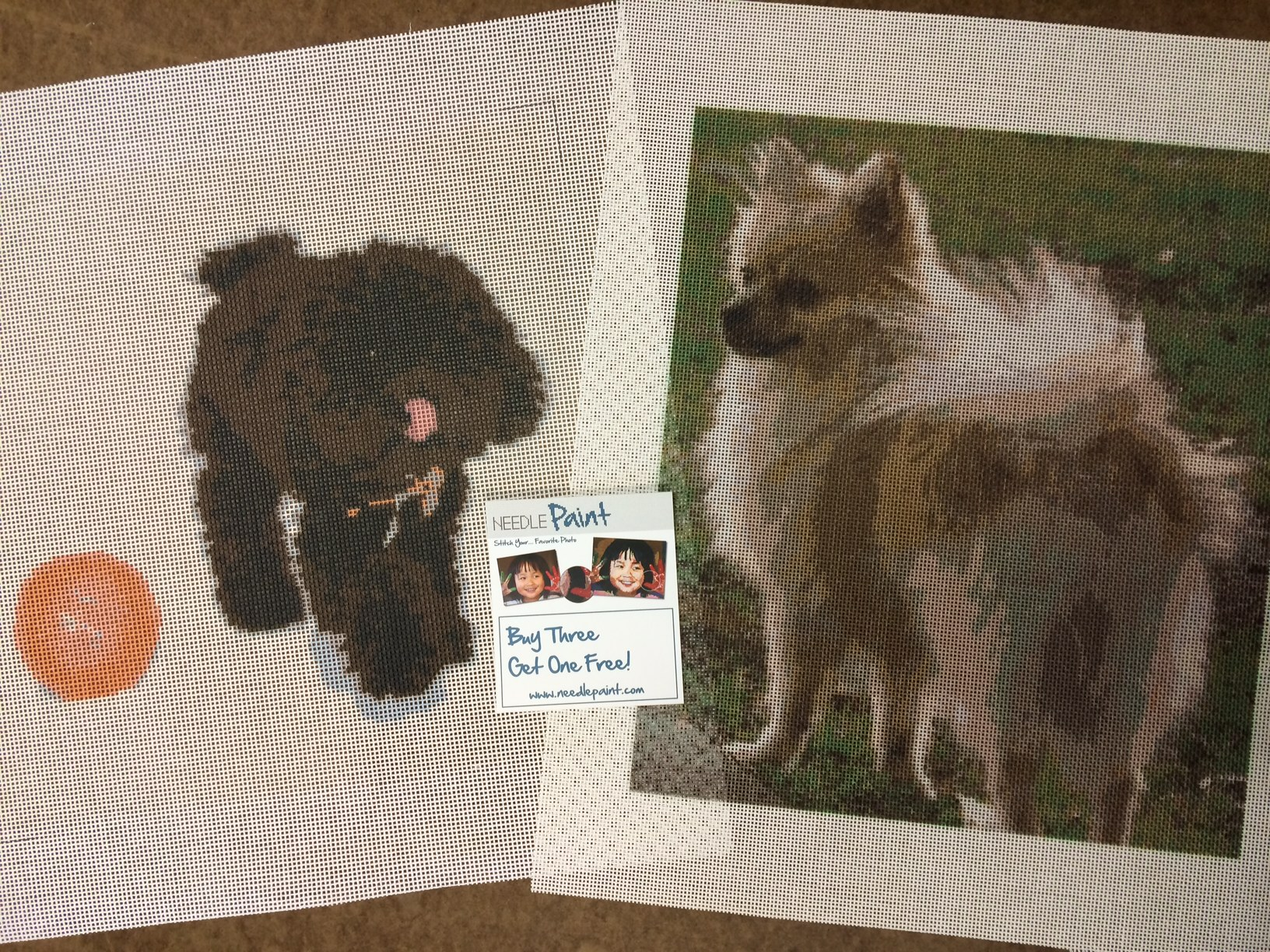 Pomeranian and Dog Playing Needlepoint Kits