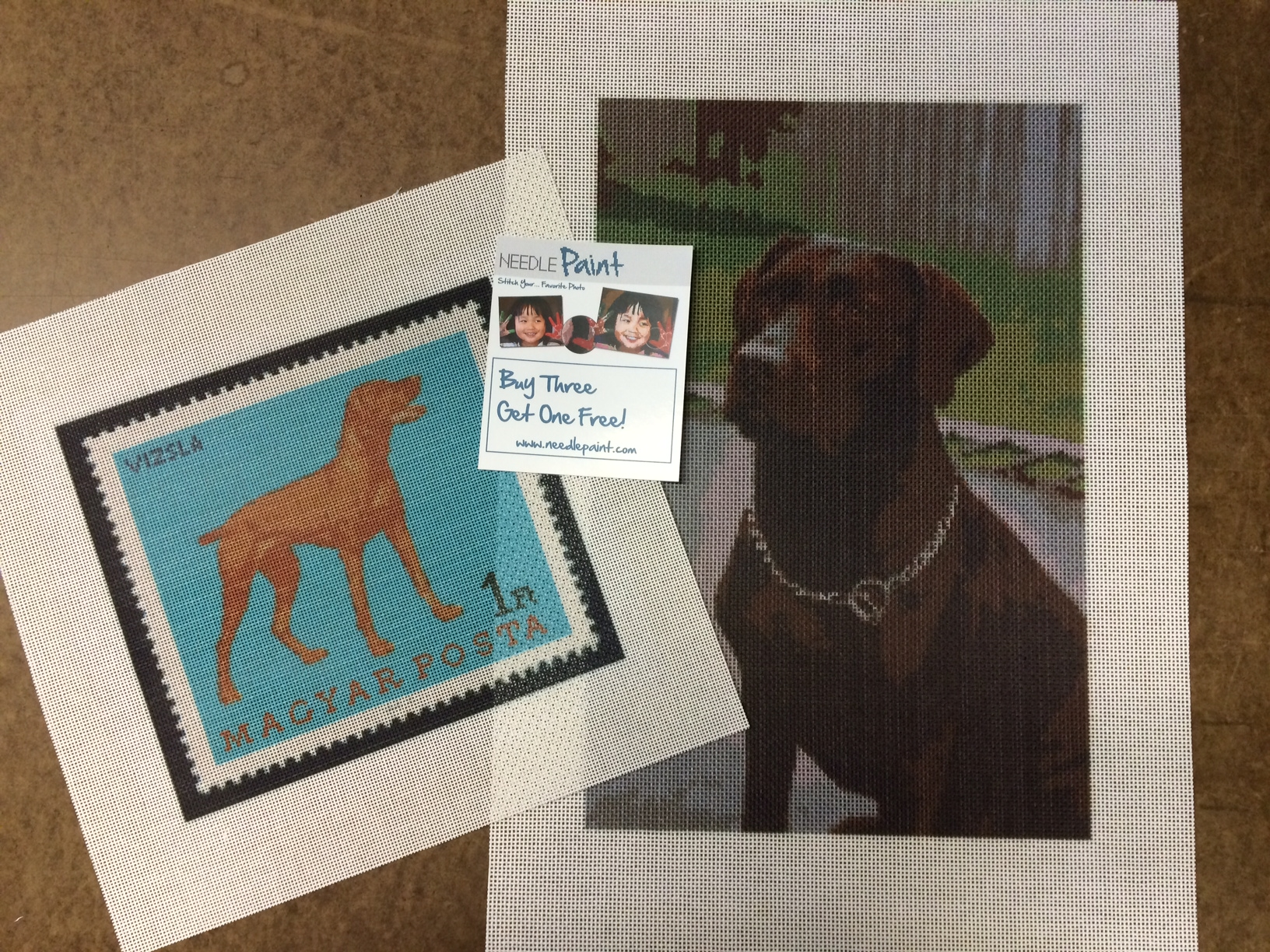 Vizsla and Chocolate Lab Needlepoint
