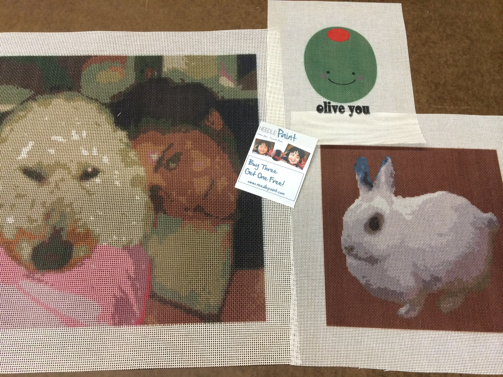 Custom Needlepoint Kits