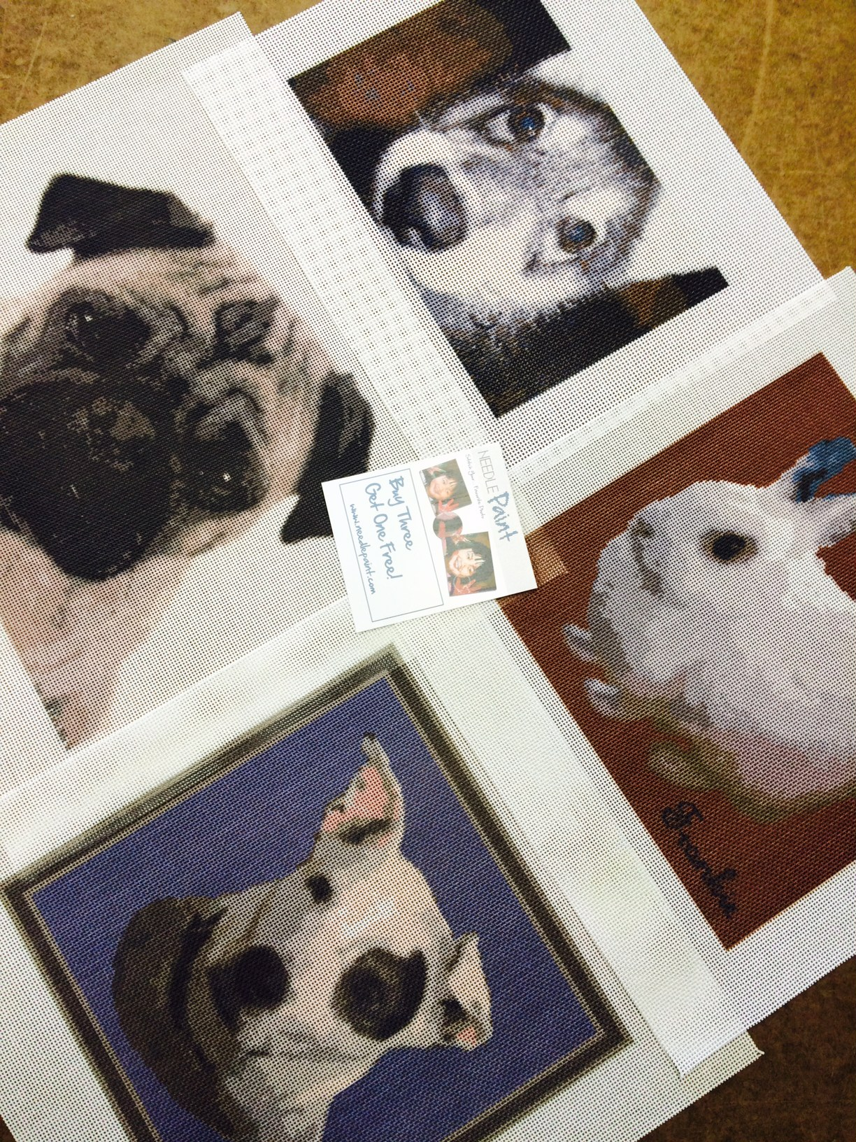 Dog Portrait Needlepoint Kits