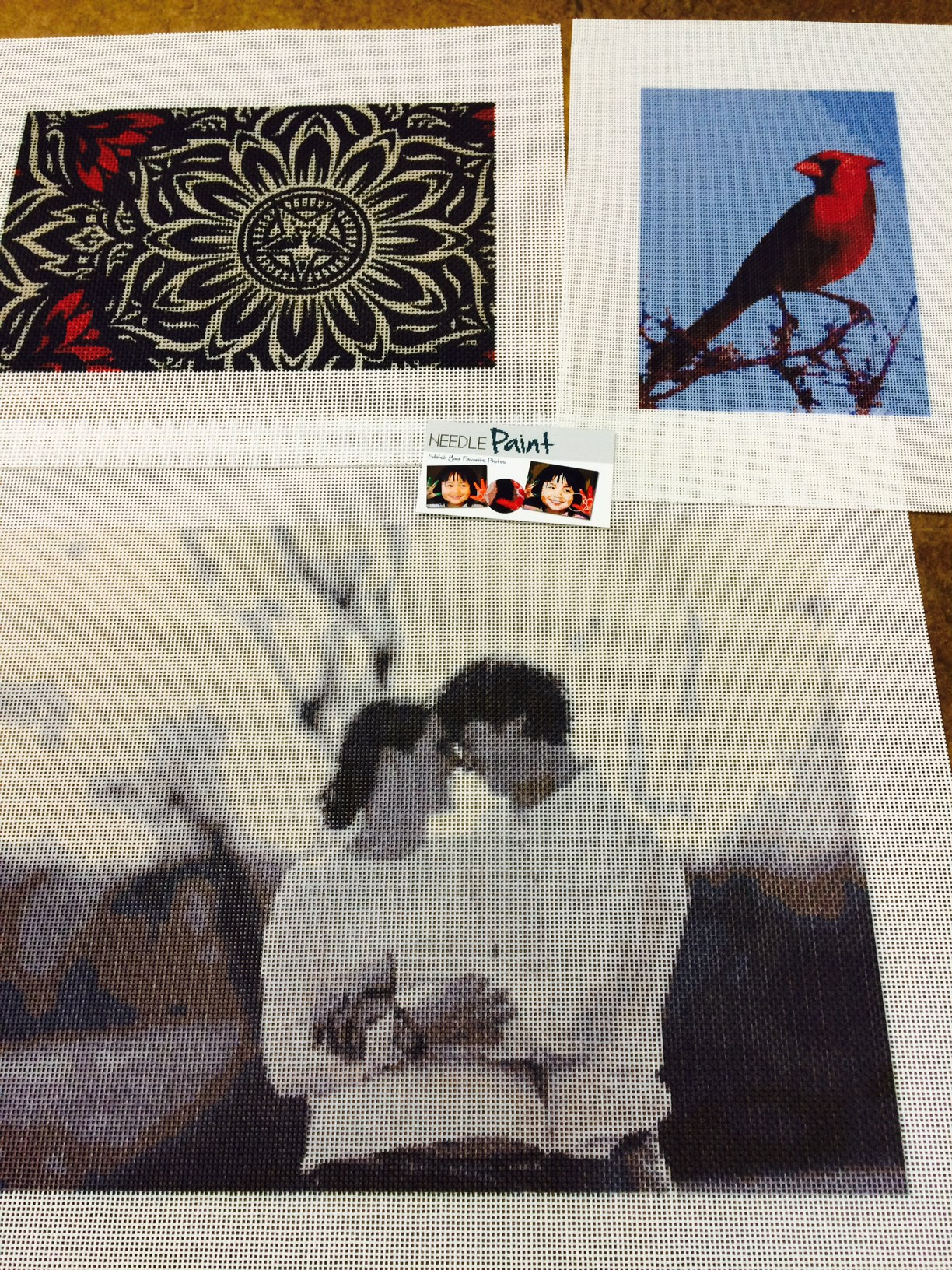 Large Portriat and Cardinal Photo to Needlepoint Kit
