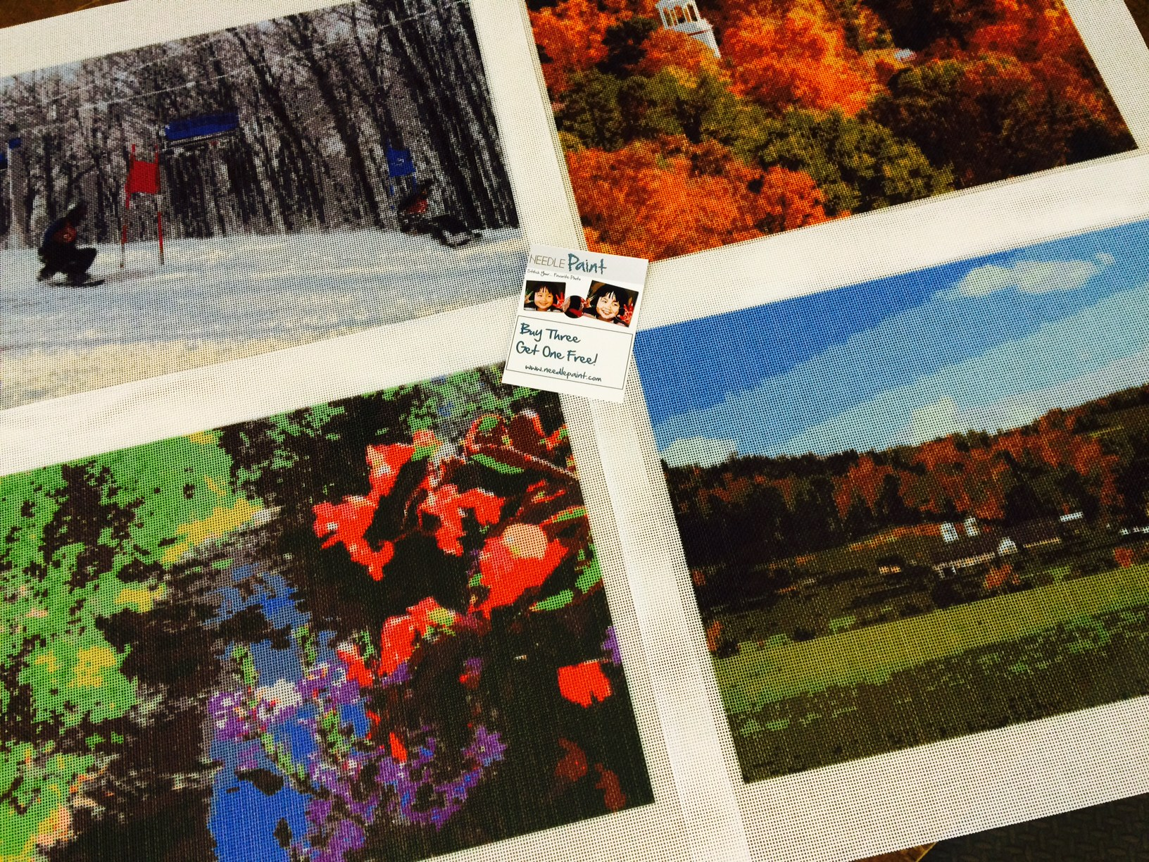 Mountain Landscape Needlepoint Kits