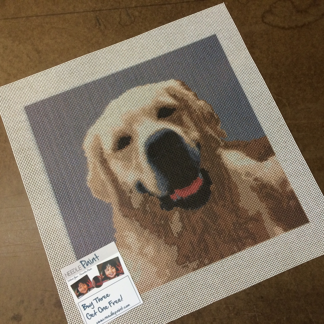 Cute Golden Retriver Custom Needlepoitn Kit