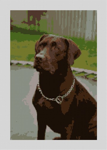 Chocolate Lab Needlepoint Canvas