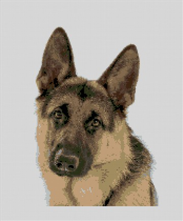 German Shepherd Needlepoint Kit