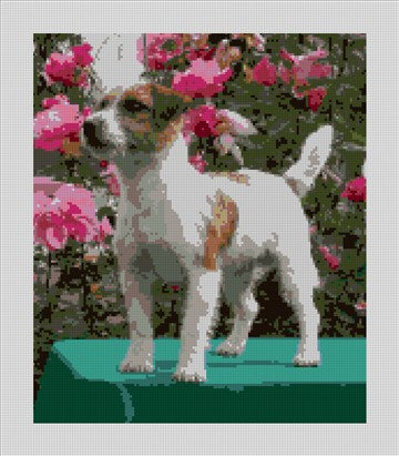Jack Russell Terrier Needlepoint Kit