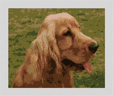 Cocker Spaniel Needlepoint Canvas