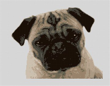 Cute Pug Needlepoint Kit