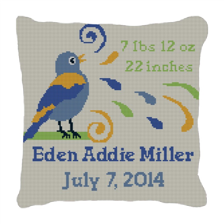 Boys Bird Bath Personalized Baby Pillow