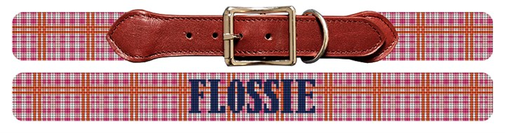 Pretty Plaid Needlepoint Dog Collar Canvas