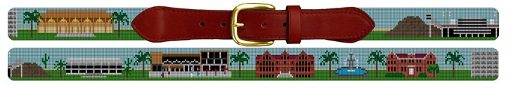 Tempe Arizona Landscape Needlepoint Belt